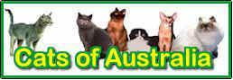 Cats of Australia