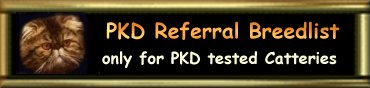 Persian Referral Breedlist for PKD tested Catteries