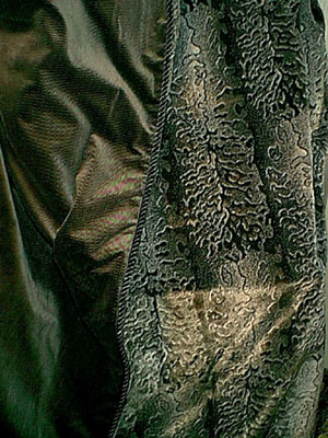 Snakeskin Velour