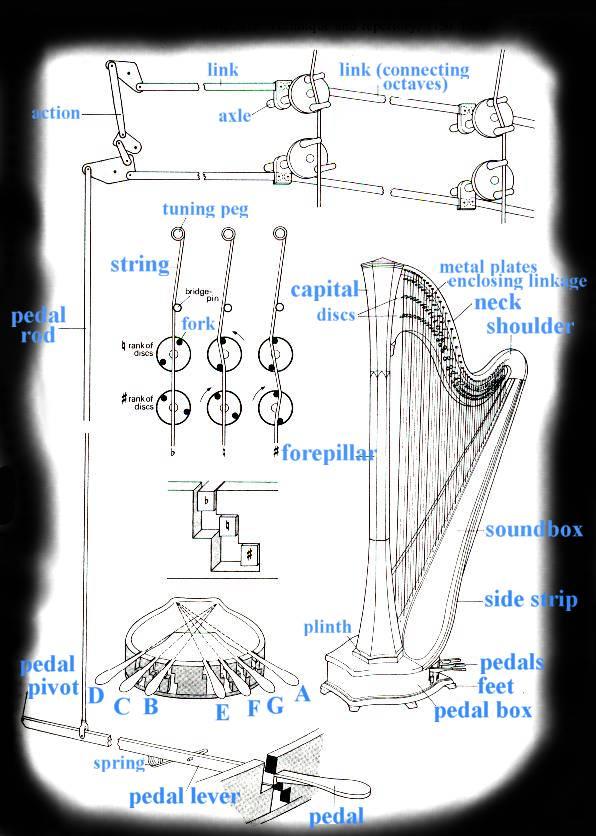 Harp String Diagram Harp Free Engine Image For User
