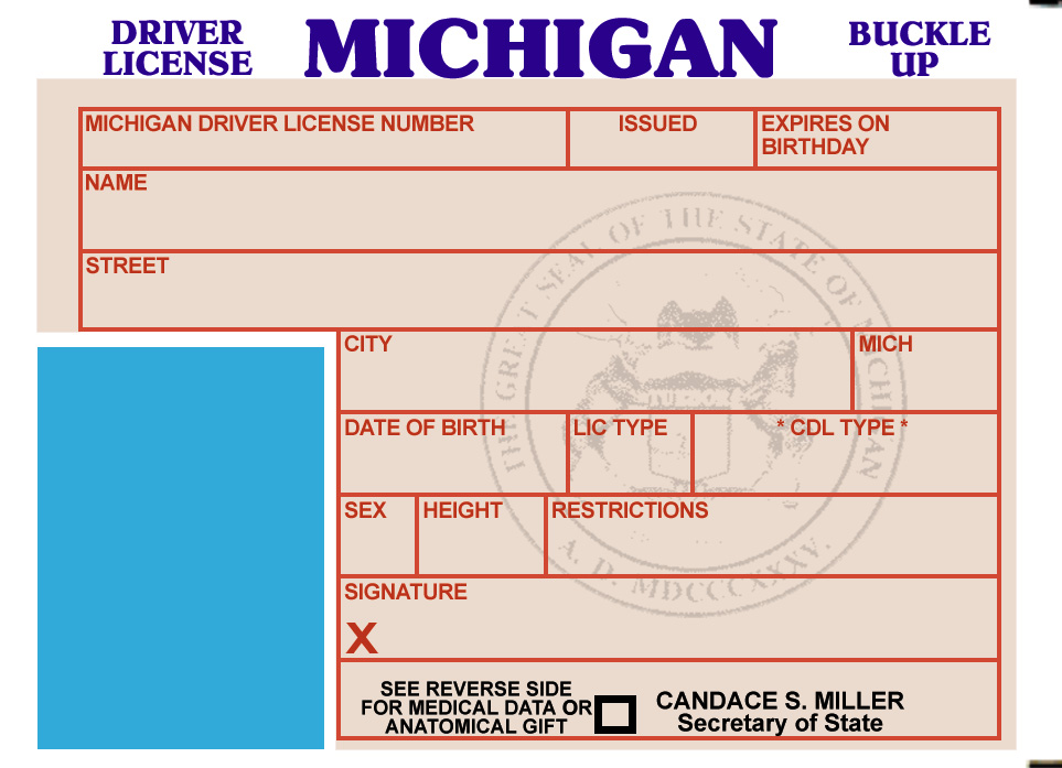 Fake Id Templates