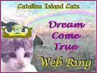 Catalina Island Cats DREAM COME TRUE Web Ring