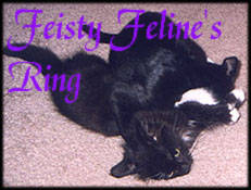 Feisty Feline's Ring