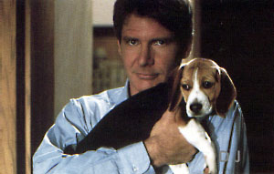 Harrison Ford is really cool