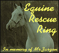 another great site in the Equine Rescue WebRing