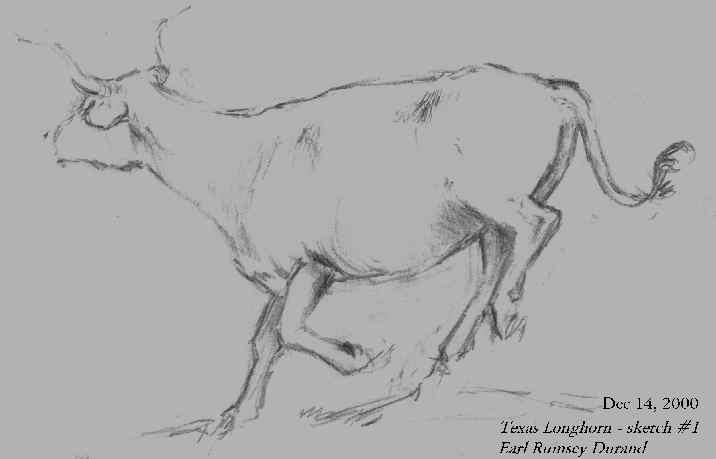 TEXAS LONGHORN sketch 716x459 by Earl Rumsey Durand