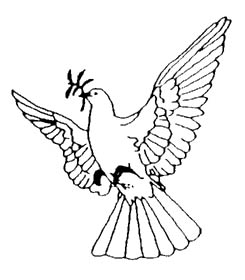 doves symbol of peace